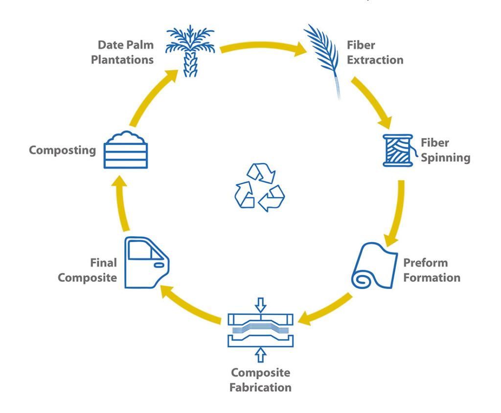 PalmFil circular economy